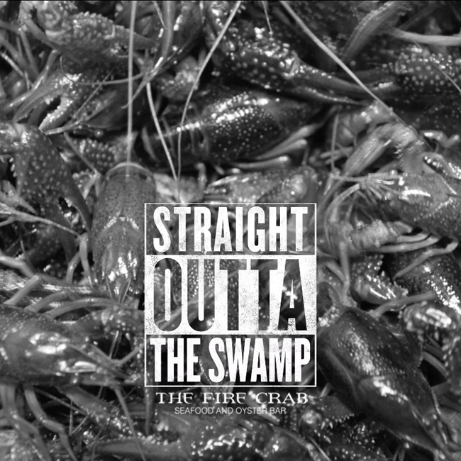 Live Crawfish Straight Outta the Swamp Orange County Garden Grove OC Fire Crab