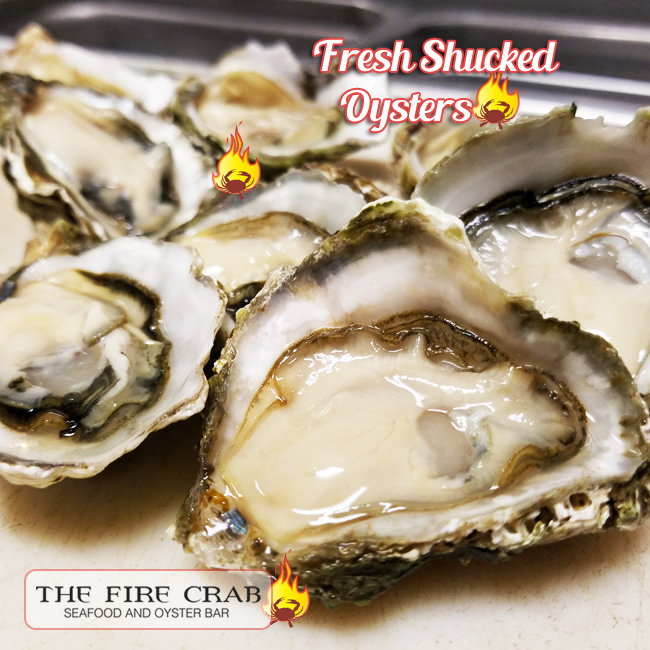 Kumamoto Fresh Oysters Shucked Half Shell Best Oyster Bar Garden Grove OC Orange County Fire Crab