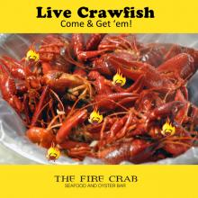 Live Crawfish Cajun Seafood In Stock Garden Grove Orange County OC Fire Crab
