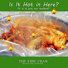 Shrimp Crawfish Hot Steam Fresh Live Cajun Garden Grove Orange County OC Fire Crab