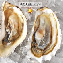 Fresh Oyster Bar Best in OC Orange County Kumamoto Blue Point Fire Crab Garden Grove