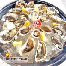 Orange County OC Fire Crab Raw Oysters on a half shell Fresh Kumamoto