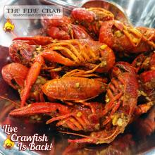 Live Crawfish Garden Grove Orange County OC Fire Crab Cajun Grub